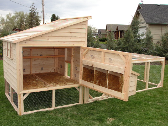 1000 images about poules on pinterest for Chicken coop dimensions